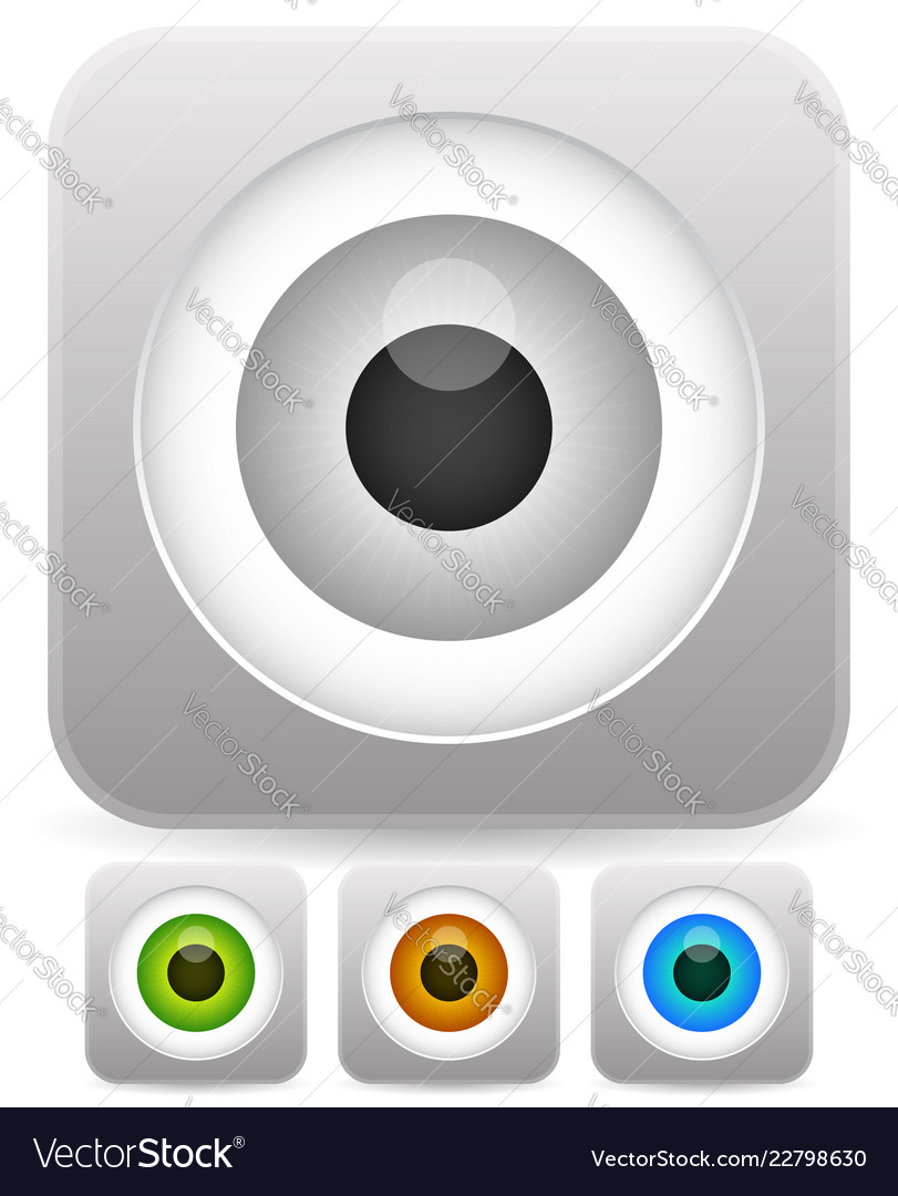 Eye Eyeball Graphics In Different Colors Gray Vector Image