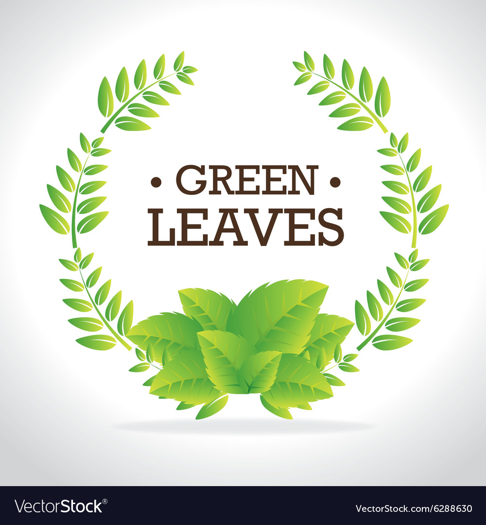 Green nature and leaves design