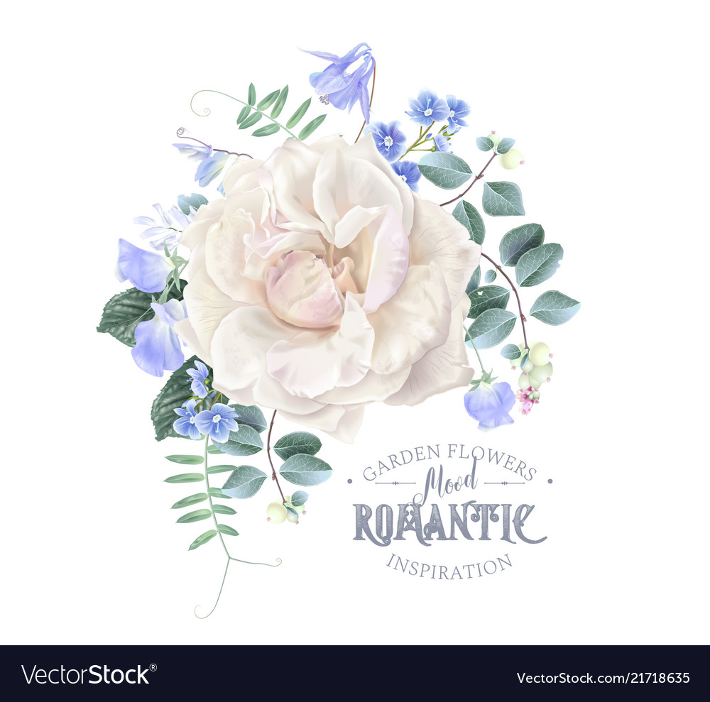 Card with white rose and blue flowers