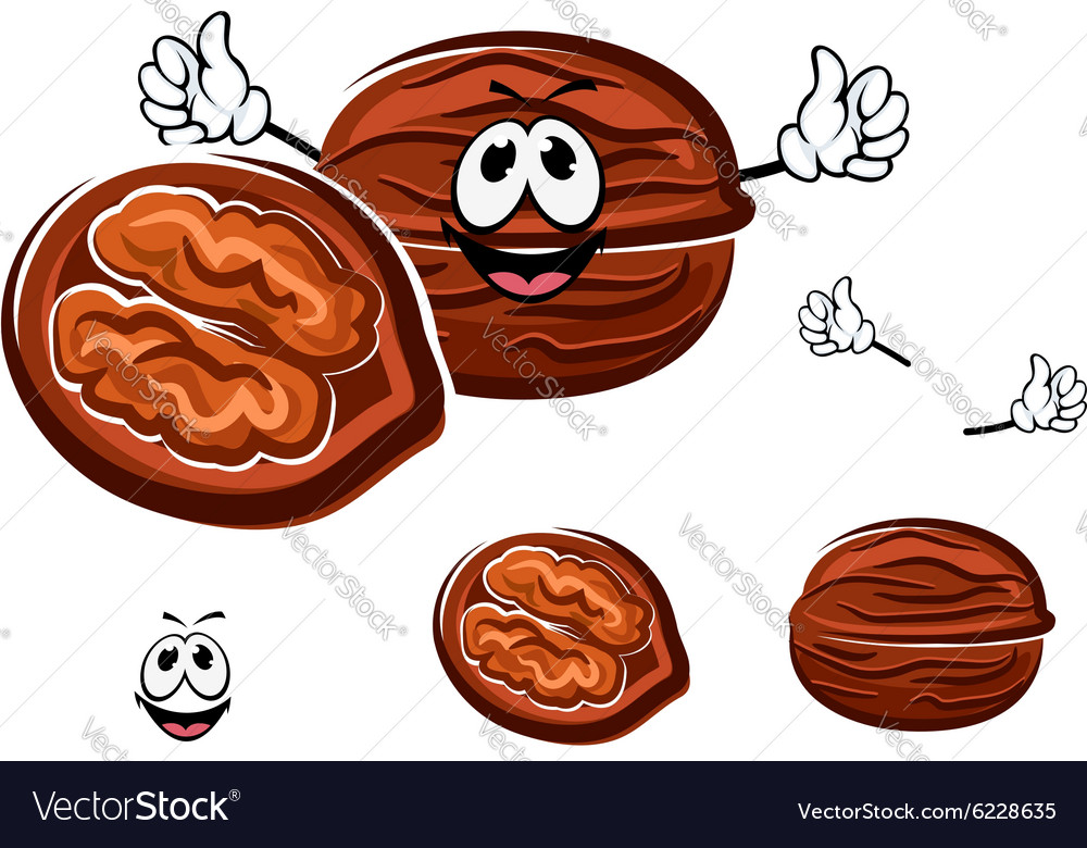Happy brown cartoon walnut character vector image