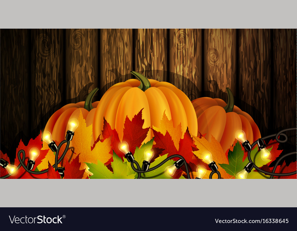 The of pumpkins isolated