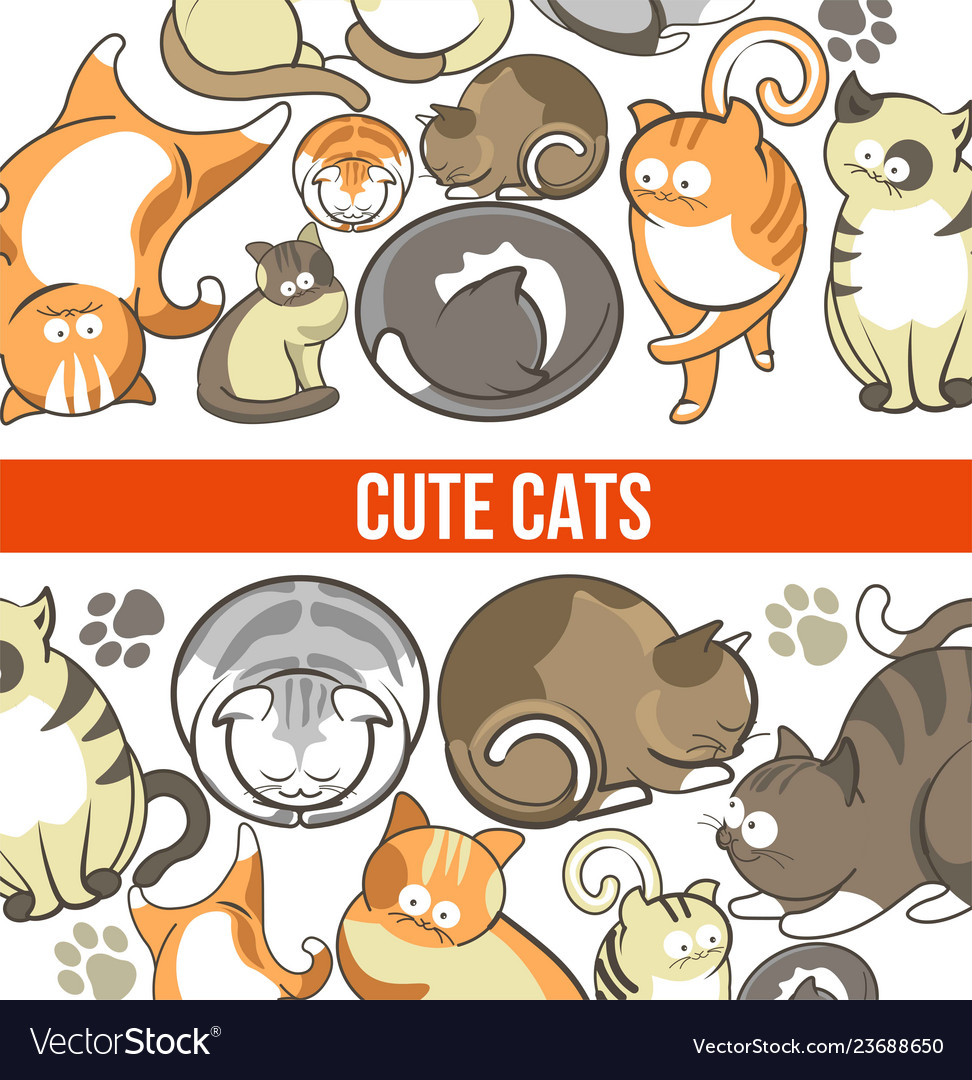 Cute cats with big eyes in sleepy or playful poses