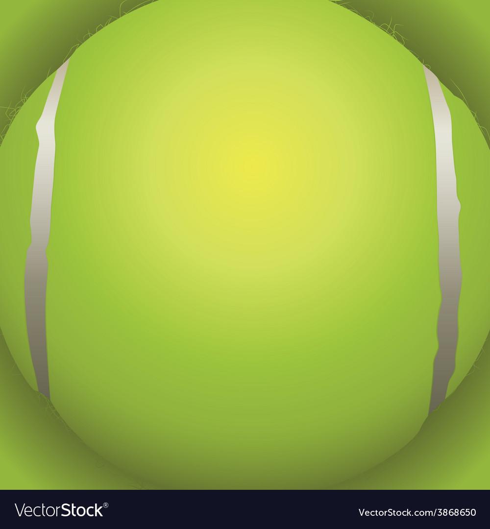Tennis Ball Closeup vector image
