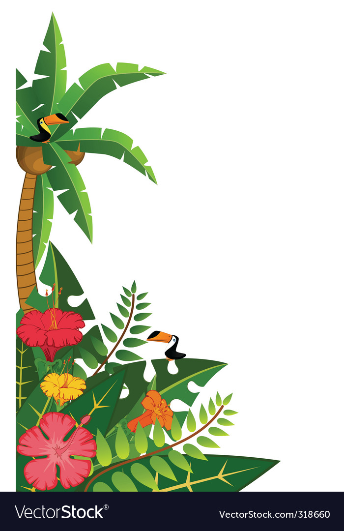 Tropical border vector image