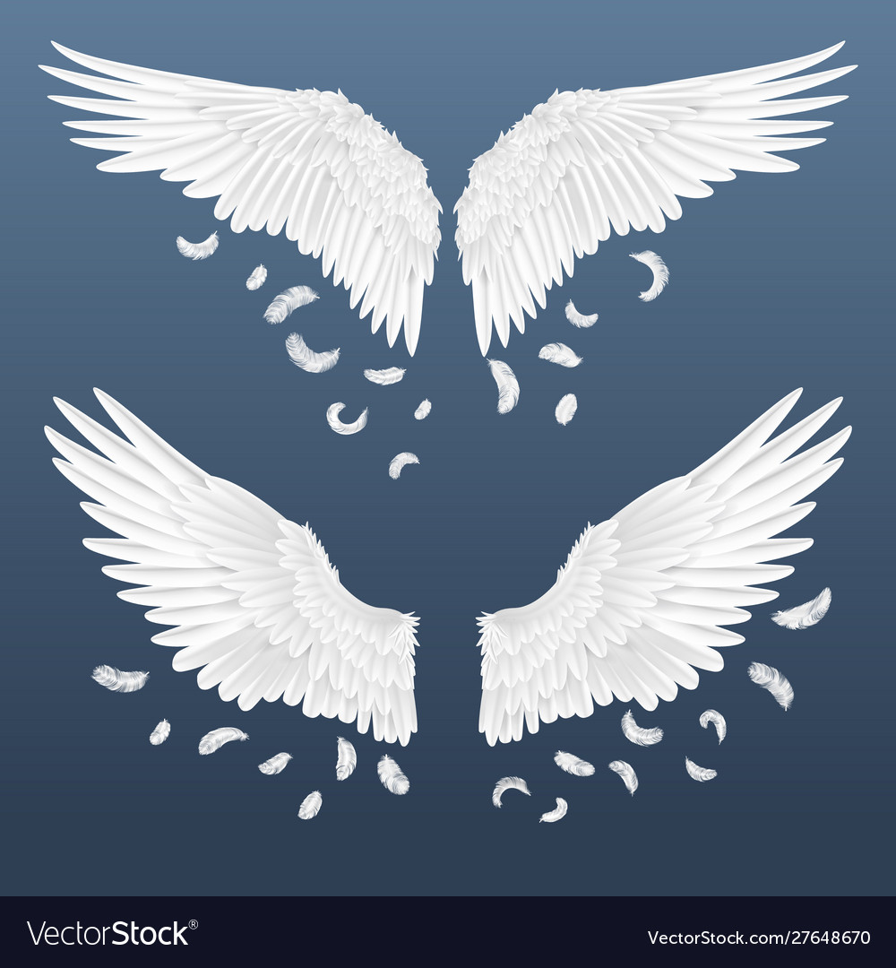 Realistic wings white isolated pair angel