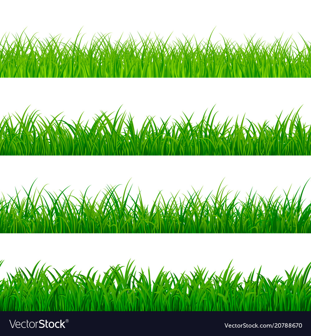 Seamless horizontal grass border green herbal