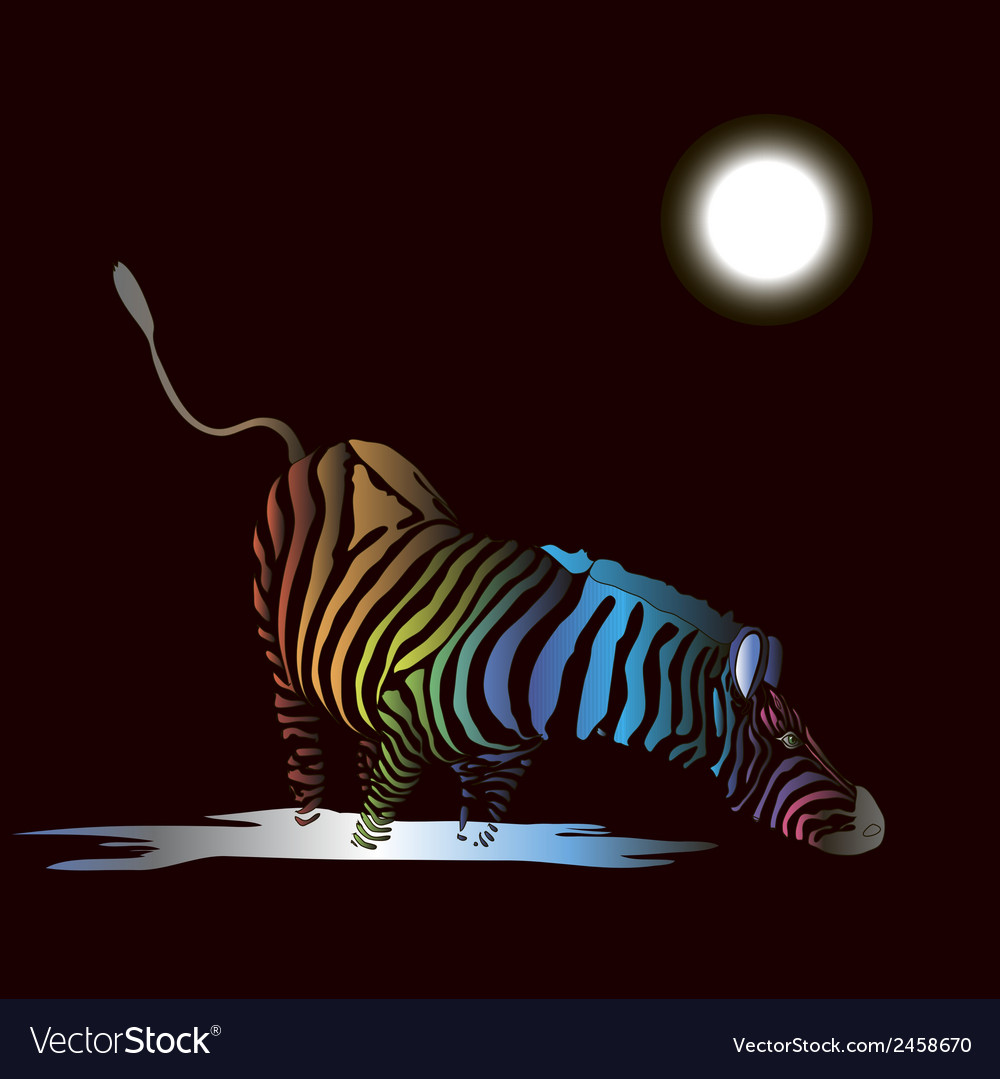 Zebra with colored stripes vector image
