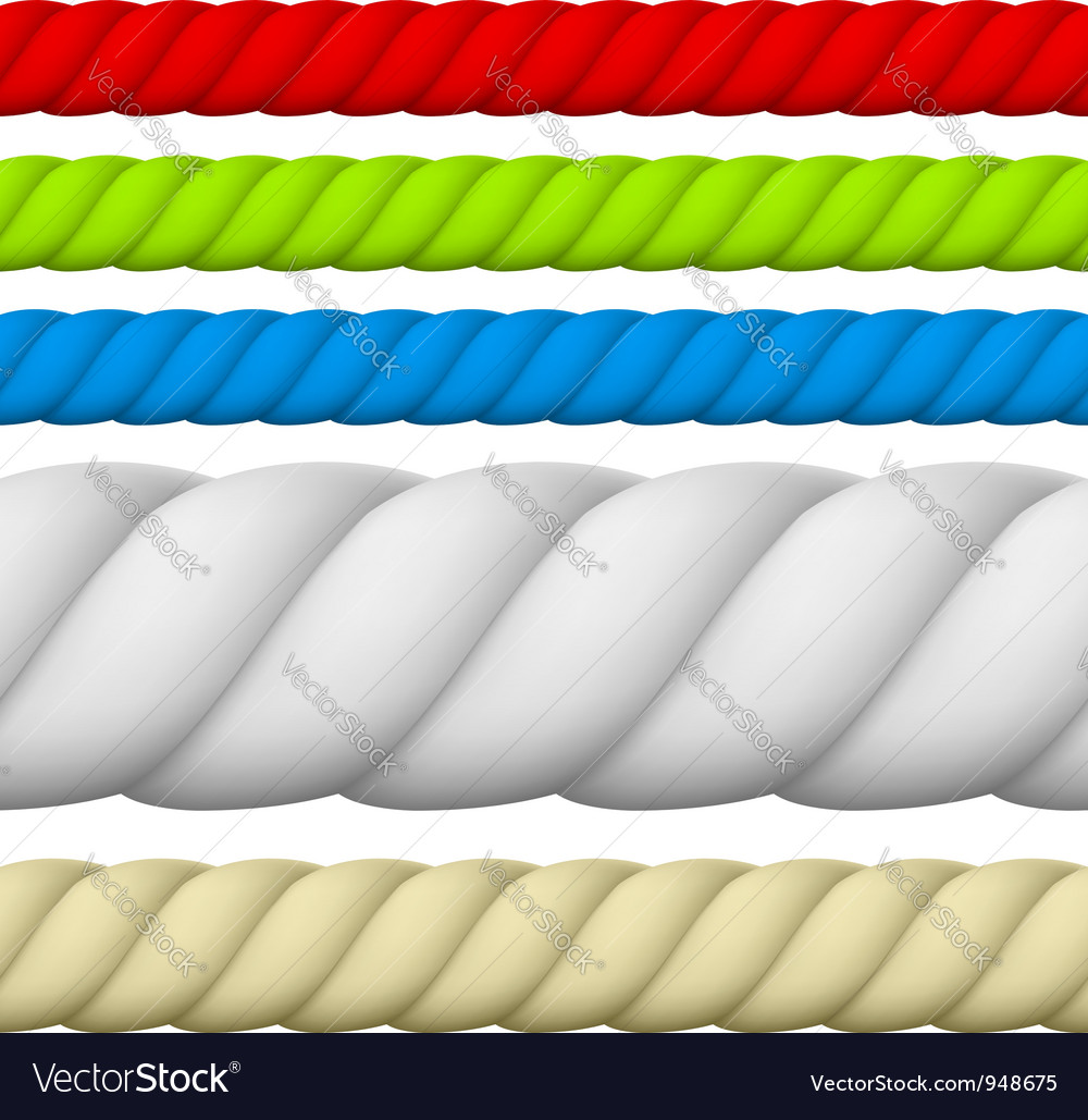 Rope vector image
