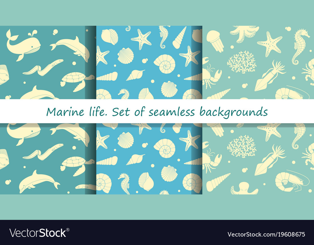 Set of seamless backgrounds with marine animals