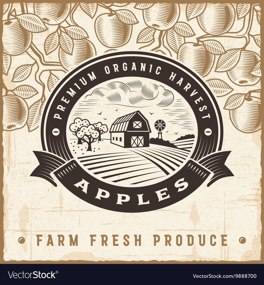 Vintage apple harvest label vector image