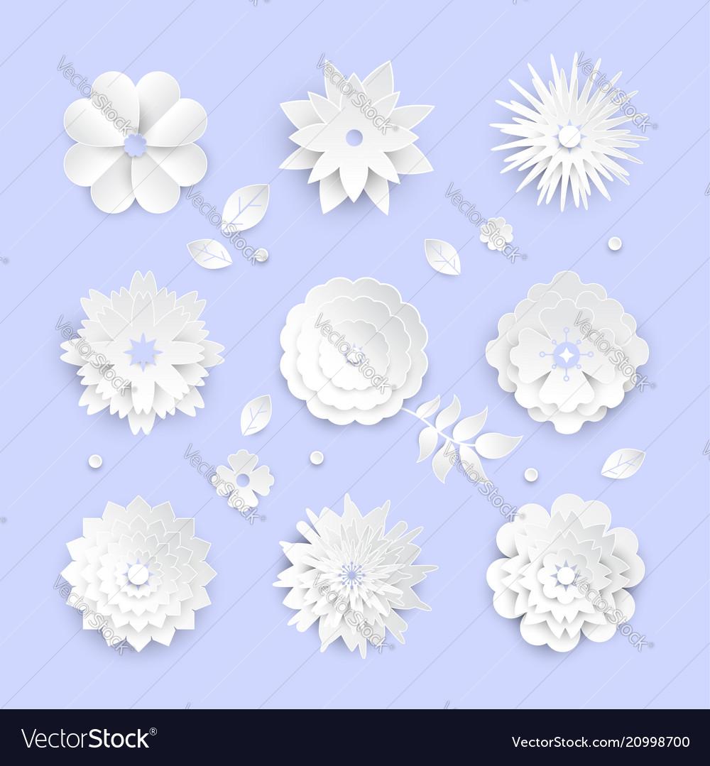White paper cut flowers - set of modern