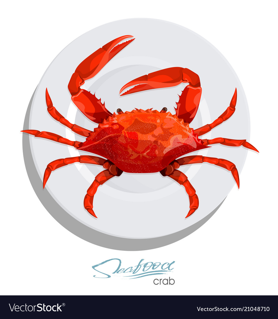 Crab on the plate in cartoon style seafood