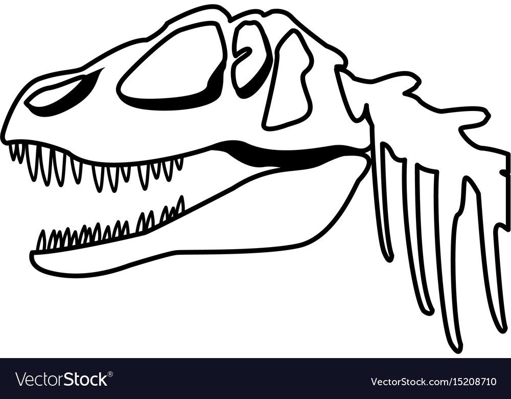 Fossil Dinosaur Head Skeleton Lizard Animal Bone Vector Image