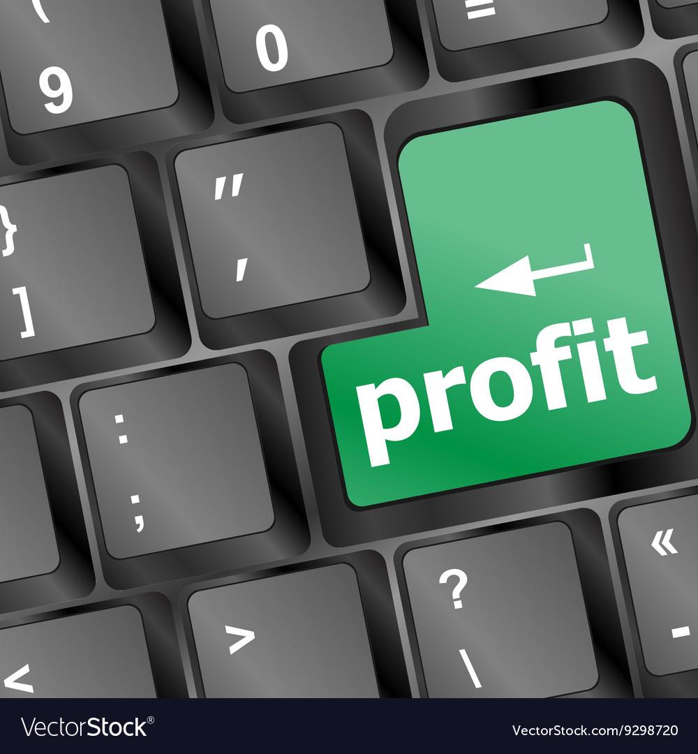 Profit key showing returns for internet business vector image