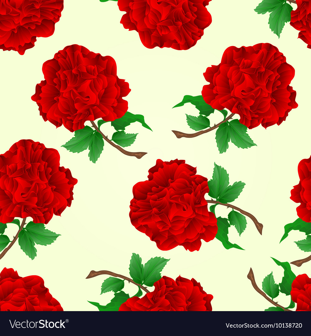 Seamless Texture Flowers Red Roses Stem Royalty Free Vector