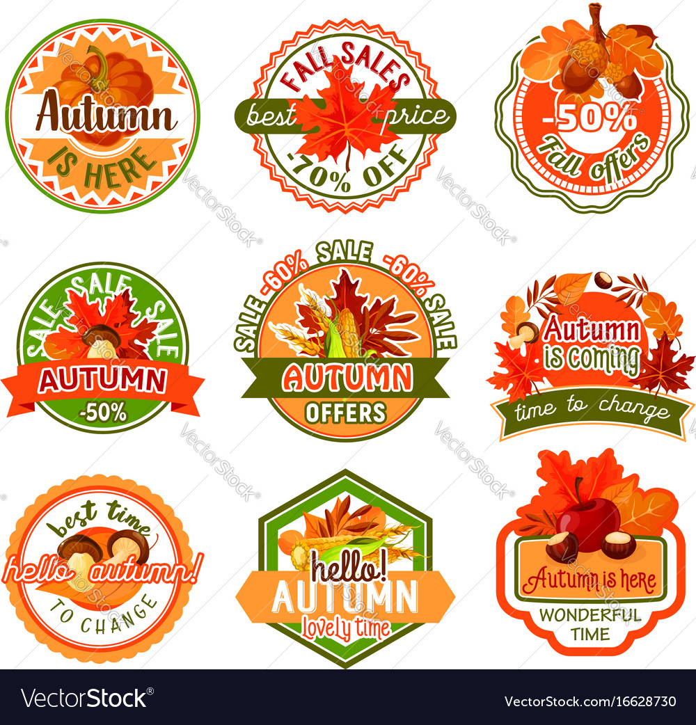 Autumn label set of fall season and sale template vector image