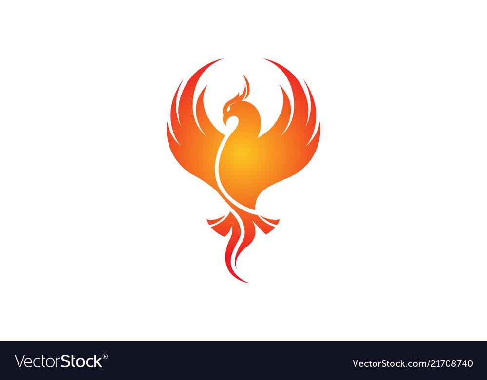 Creative Phoenix Bird Logo Royalty Free Vector Image