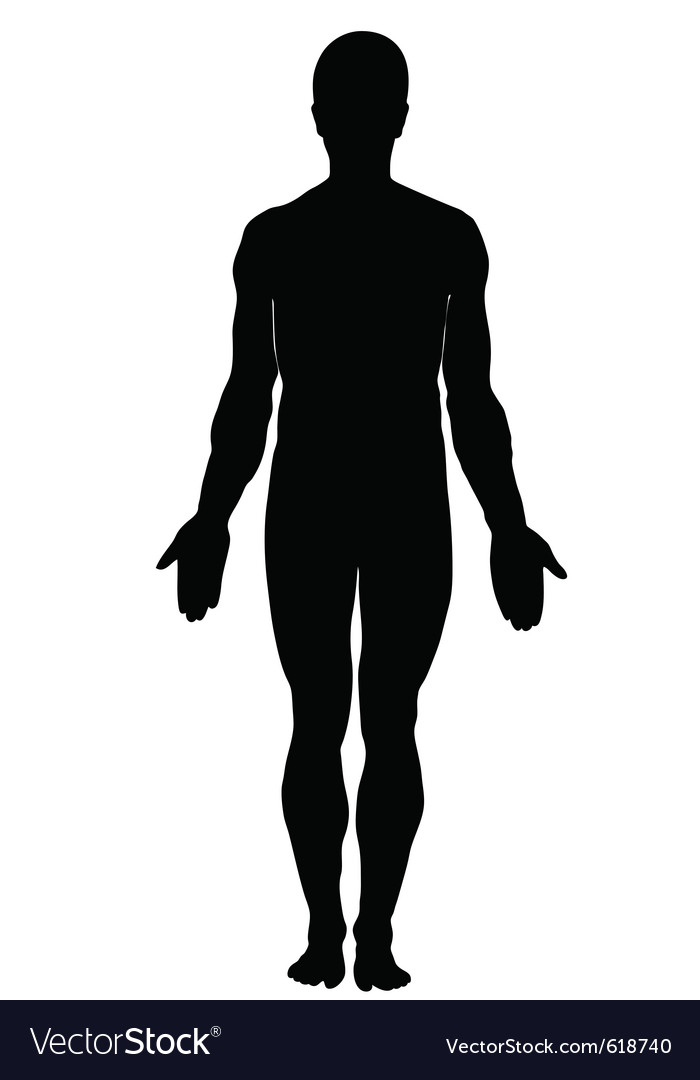 silhouette of human male royalty free vector image rh vectorstock com human silhouette vector illustrator human silhouette vector free download