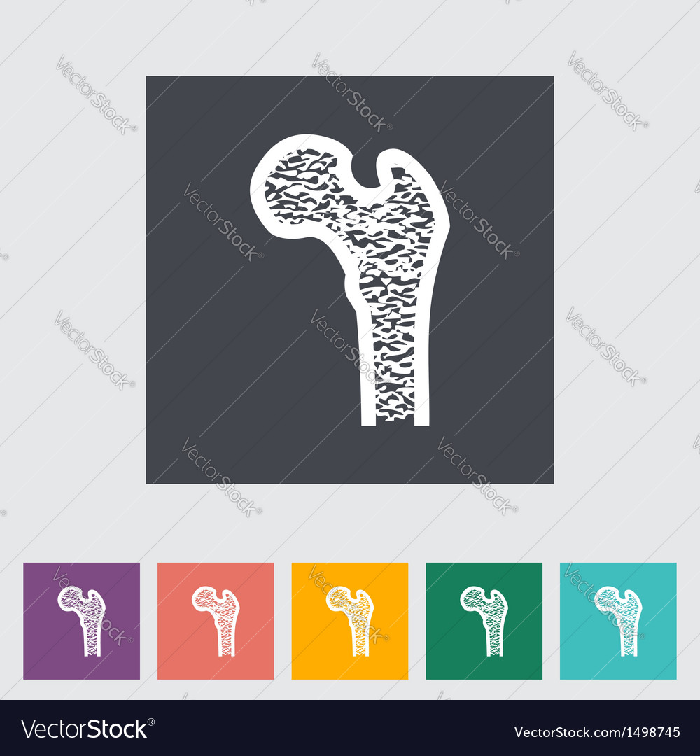 Bone vector image