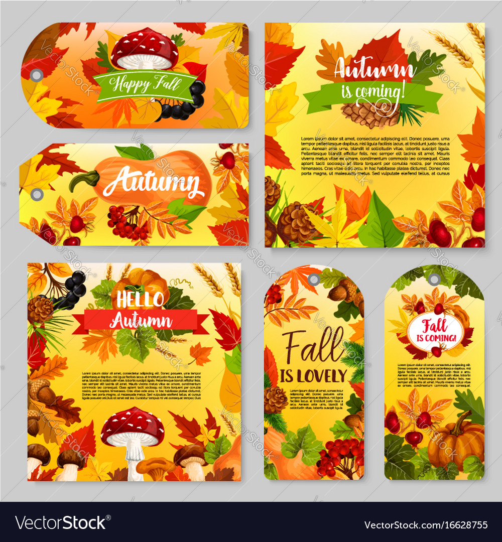Autumn holiday gift tag thanksgiving poster set vector image