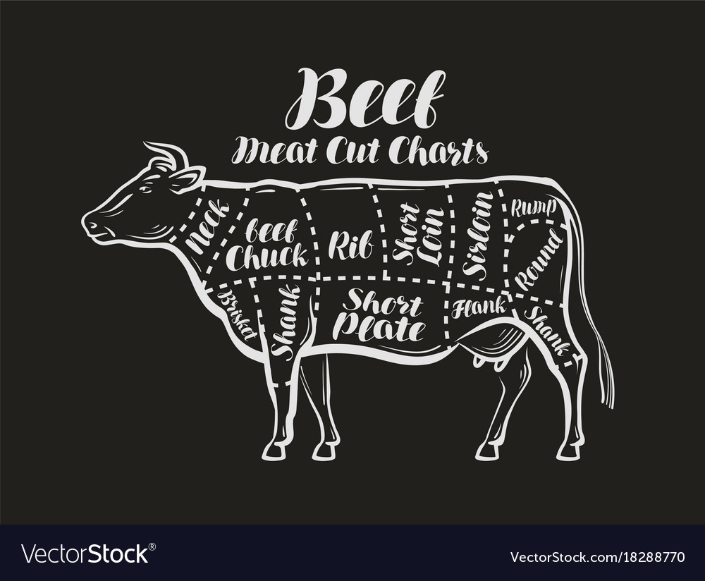 Meat Cut Charts Cow Beef Concept Menu Royalty Free Vector Diagrams Image