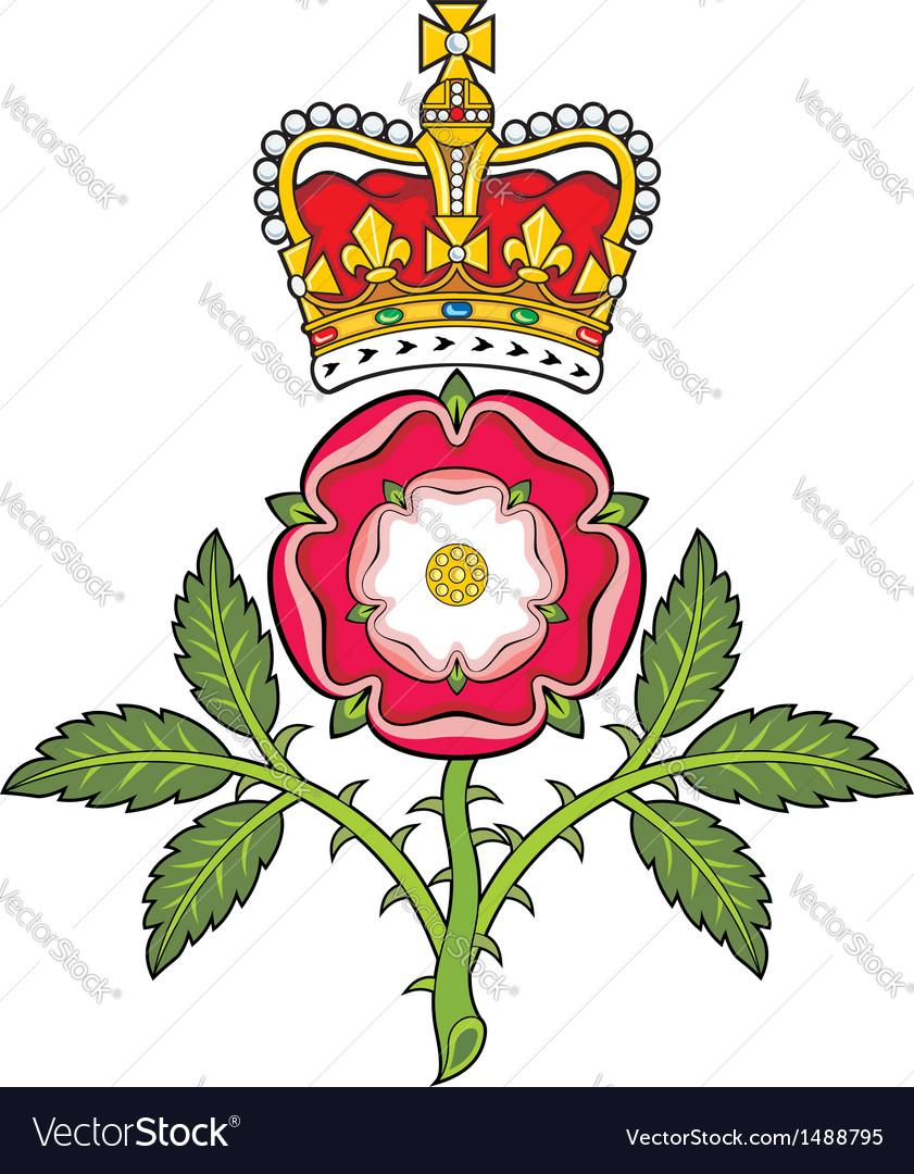 Фуксия купить, красная букет роза как символ англии