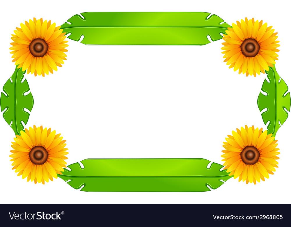 a floral border design royalty free vector image