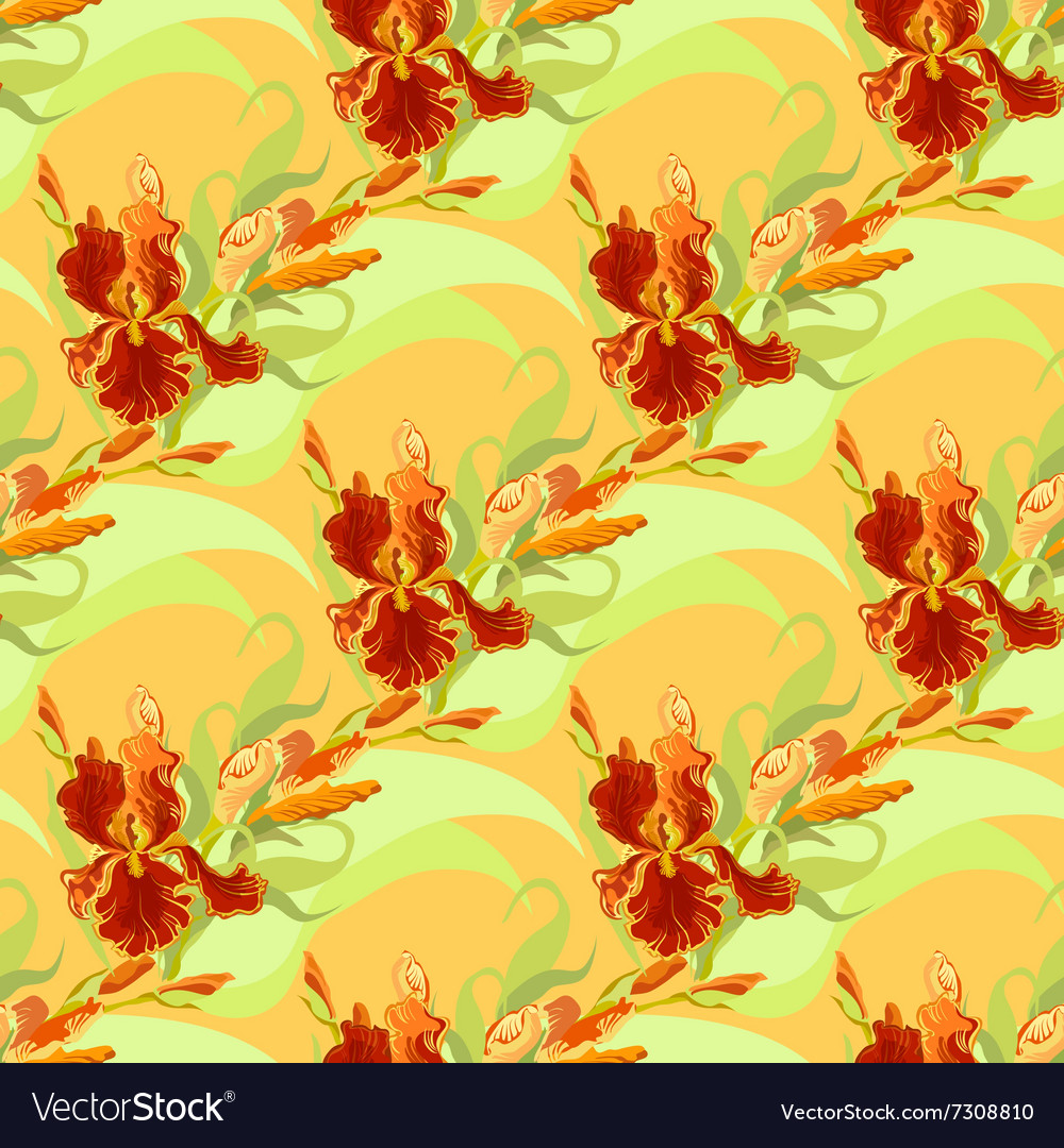 Floral Seamless Pattern Red Iris Flower Royalty Free Vector