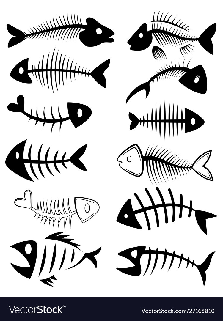 Set silhouettes fish skeletons collection