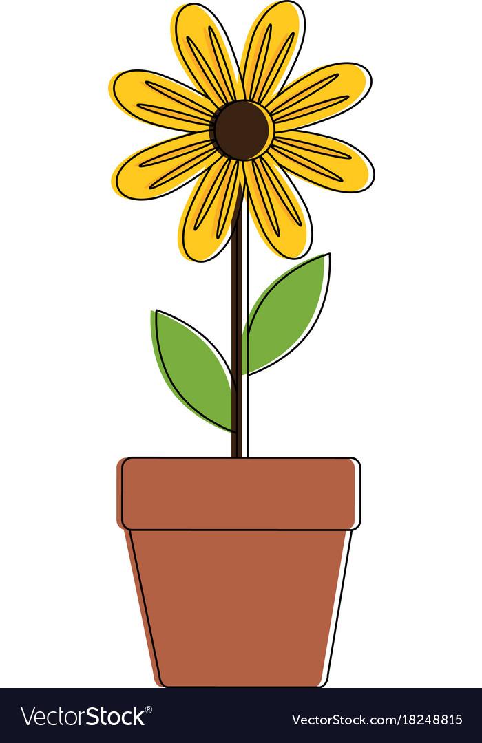 Cute sunflower plant in pot