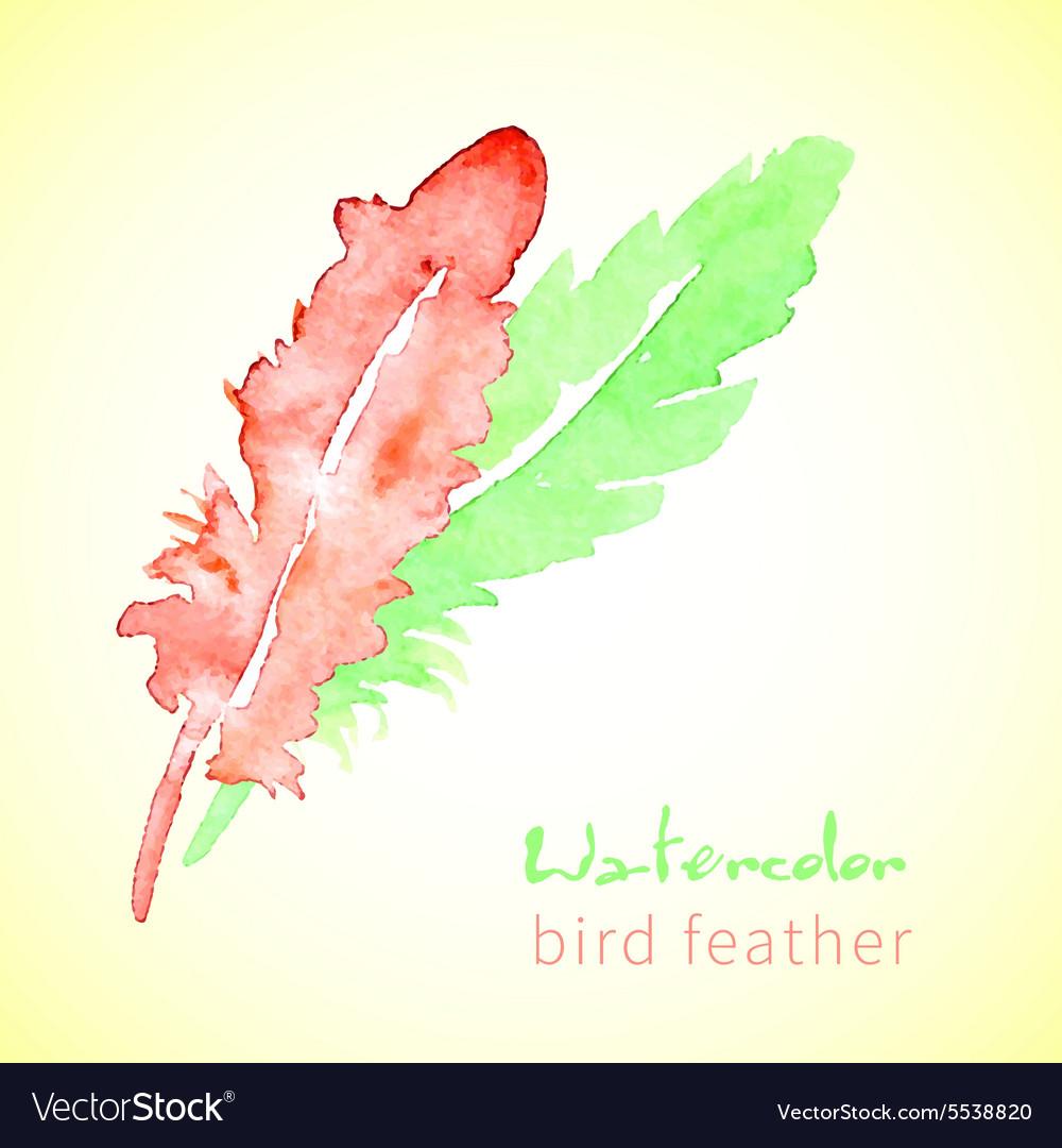 Hand drawn beautiful stylish ethnic feathers