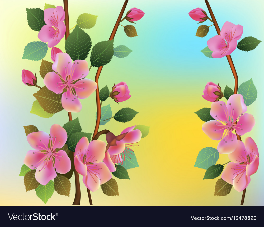 Nature background with blossom branch of pink