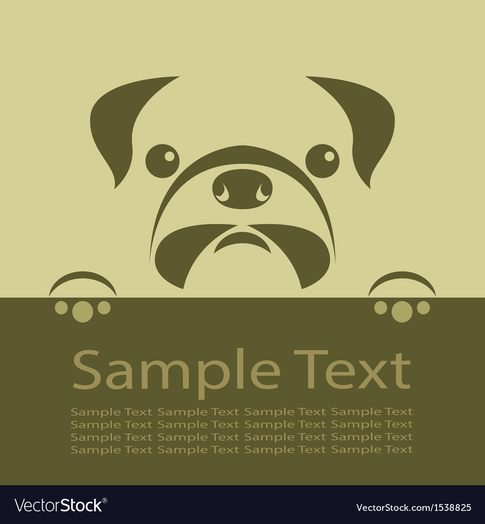 Pug dog vector image