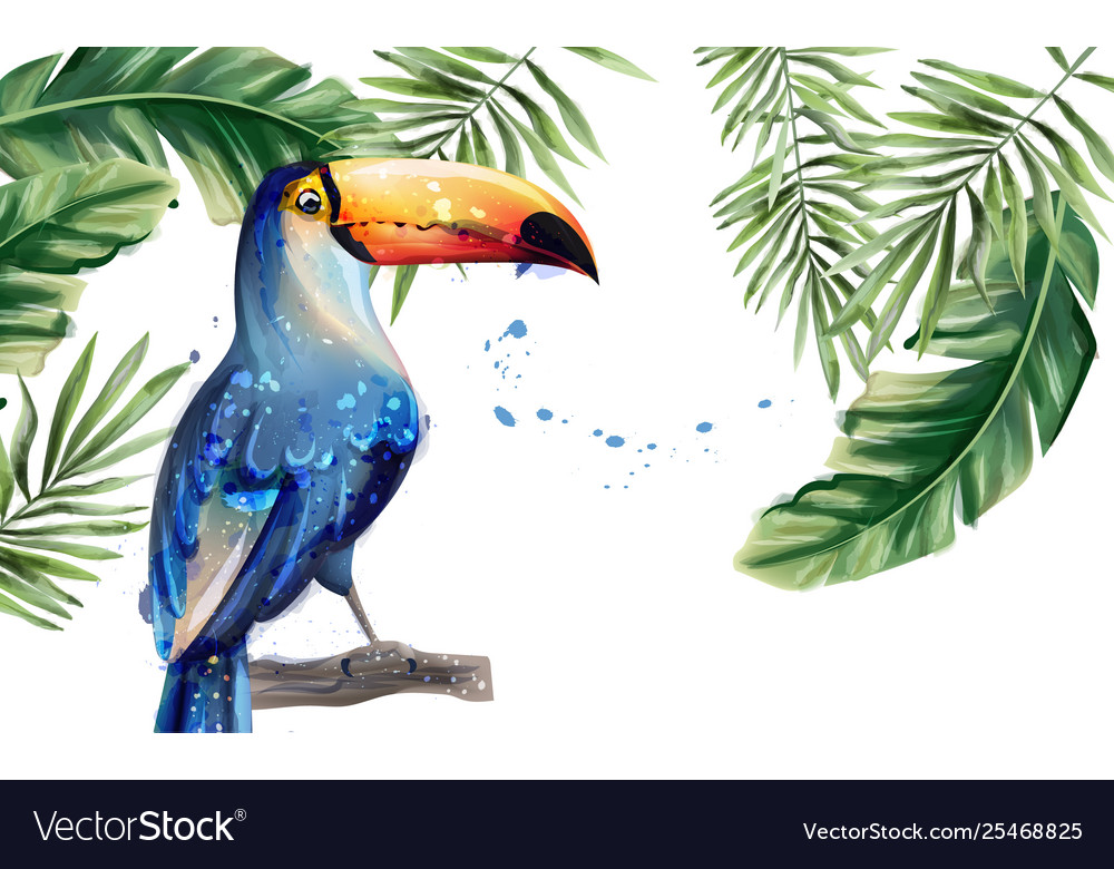 Toucan watercolor tropic exotic summer