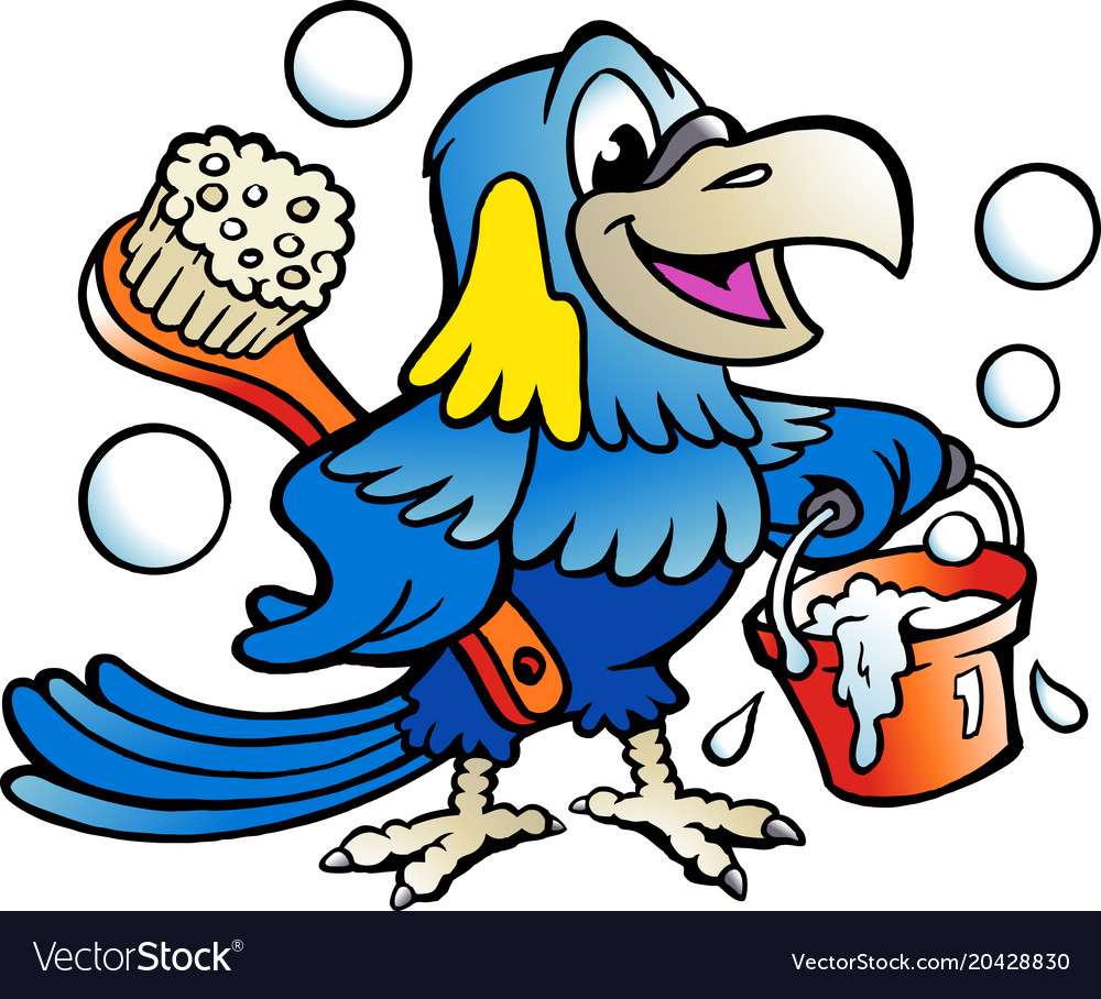 Cartoon of an happy parrot cleaner