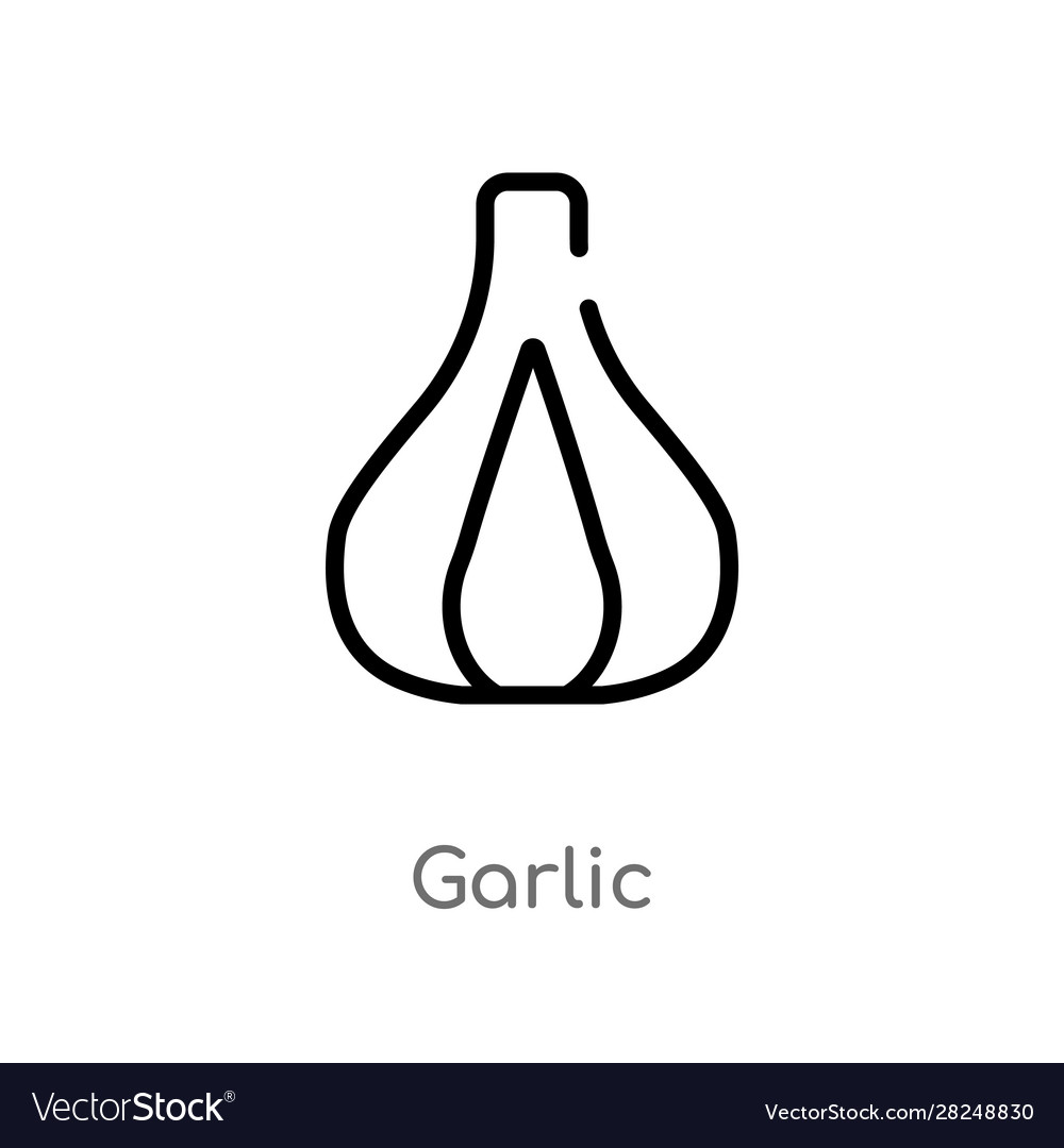 Outline garlic icon isolated black simple line