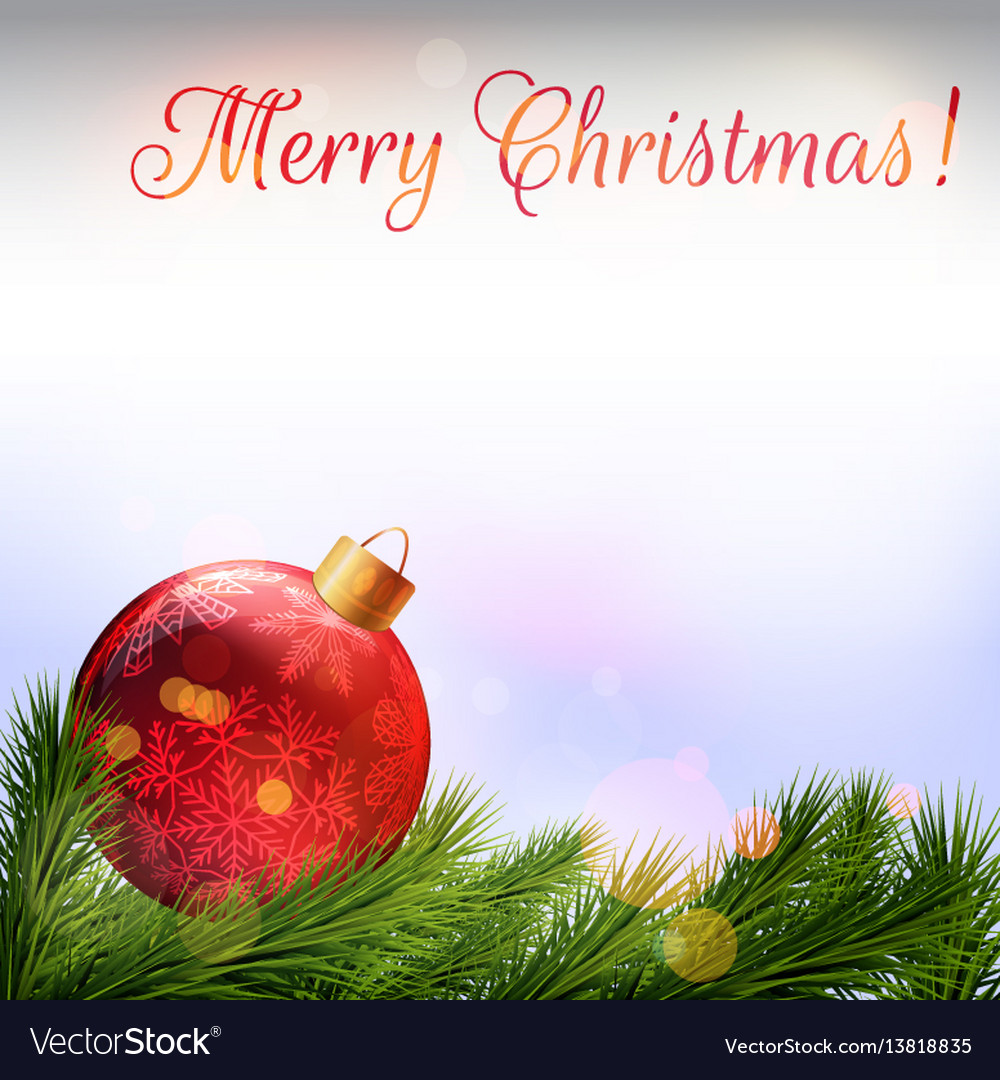 Christmas card realistic fir branches and vector image