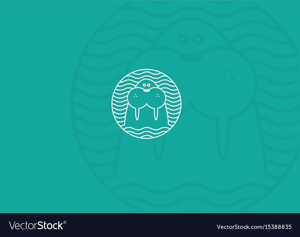 Contour modern logo walrus in a round pattern vector image