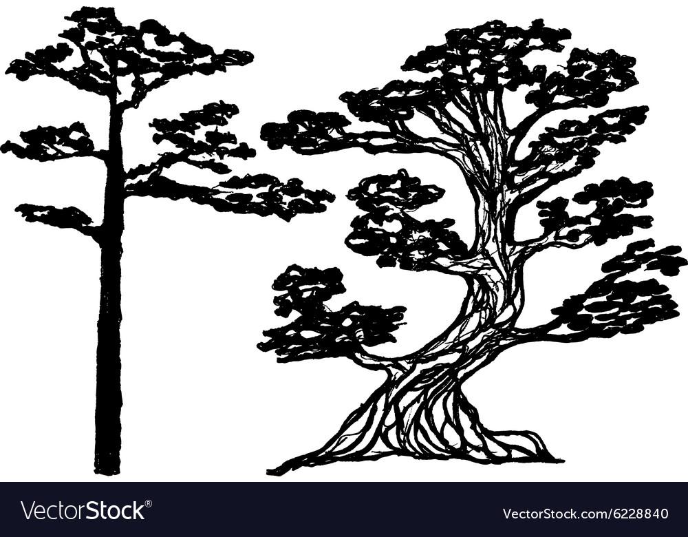 Ink conifer trees