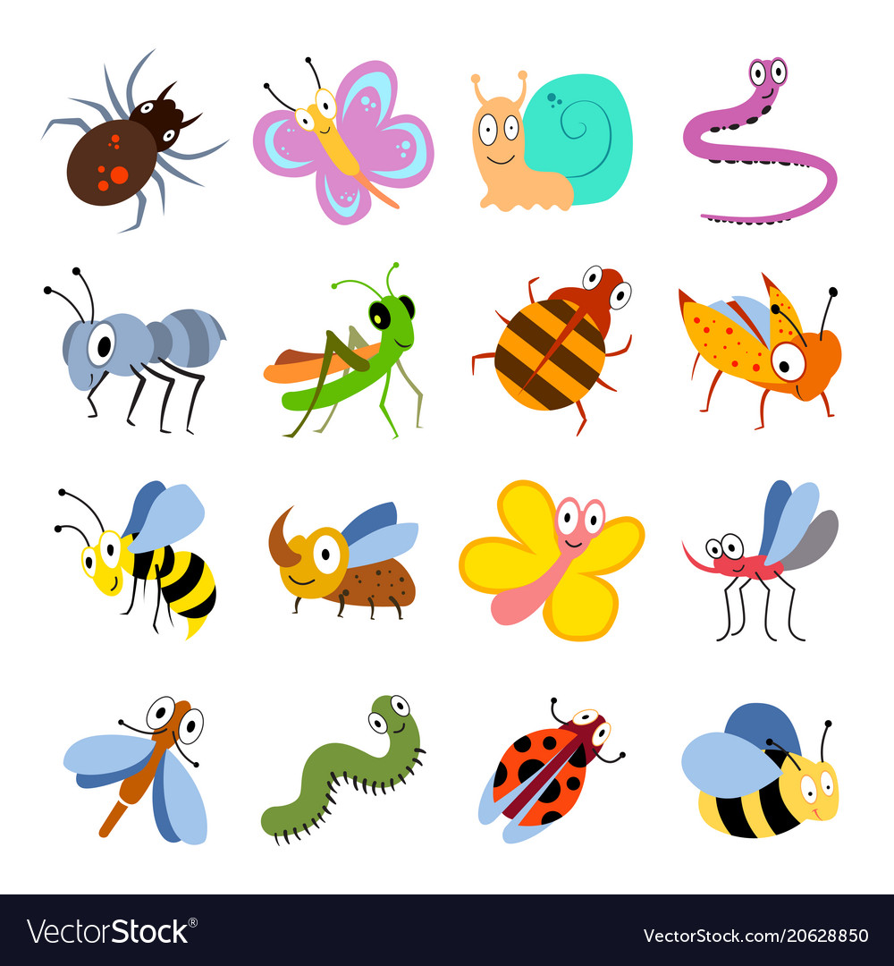 Cute and funny bugs insects collection