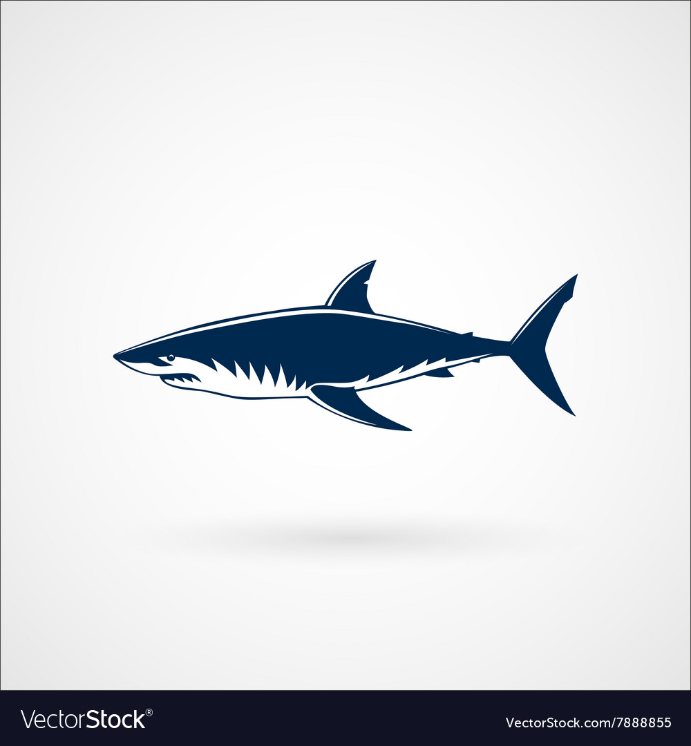 Great white shark sign vector image