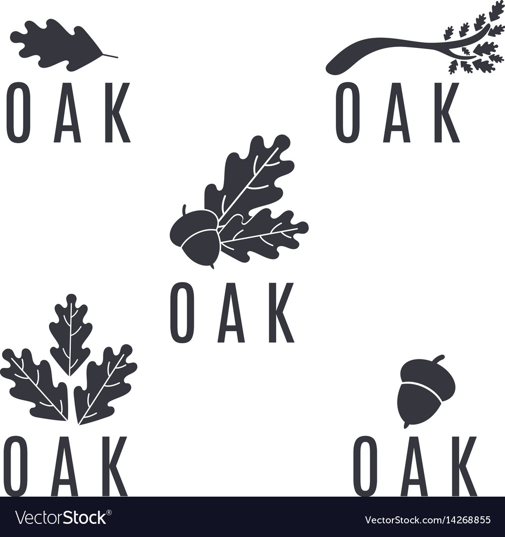 Set of logos on an oak tree with leaves and acorns