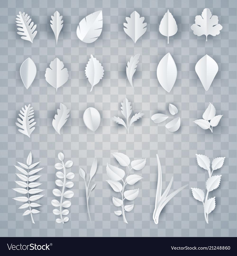 Set of white paper leaves