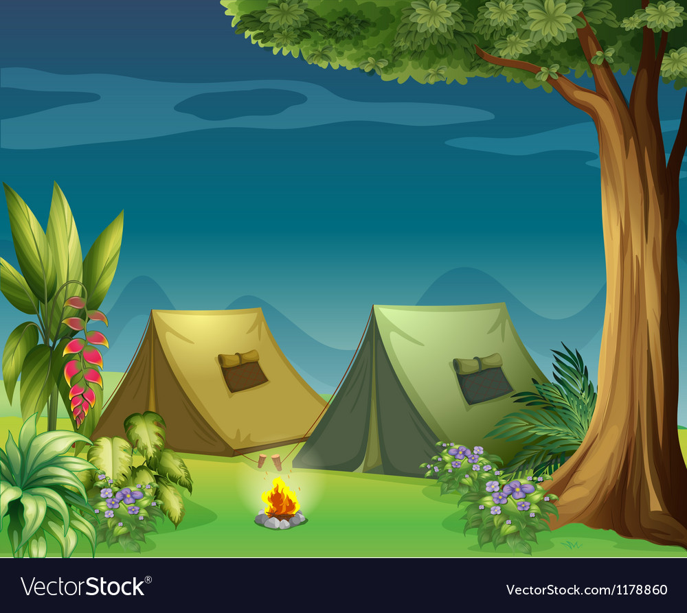 Tents in the jungle vector image