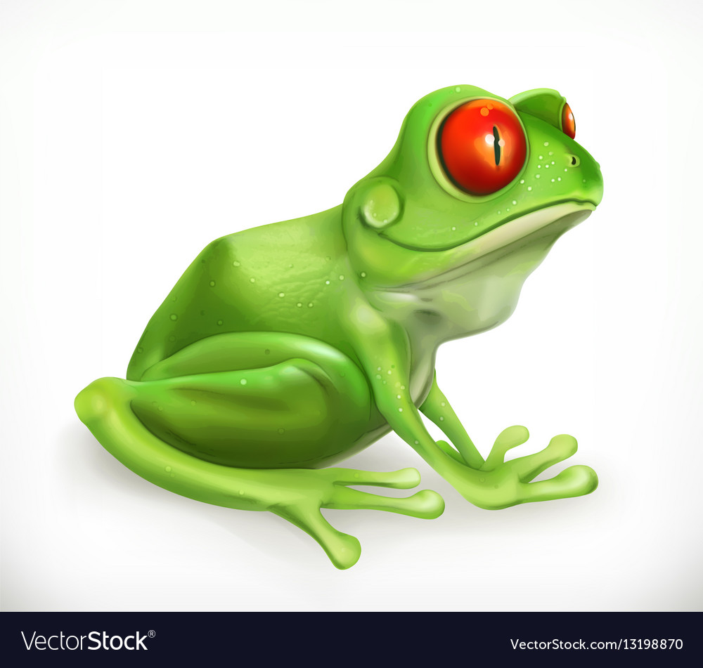 Frog Toad Funny animal 3d icon