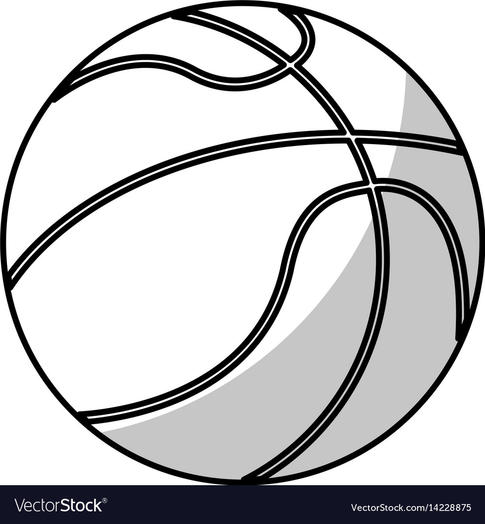 Basketball ball equipment - shadow vector image