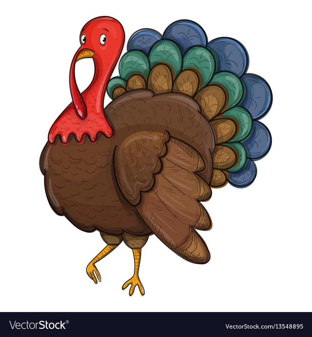 Sketch turkey on a white background