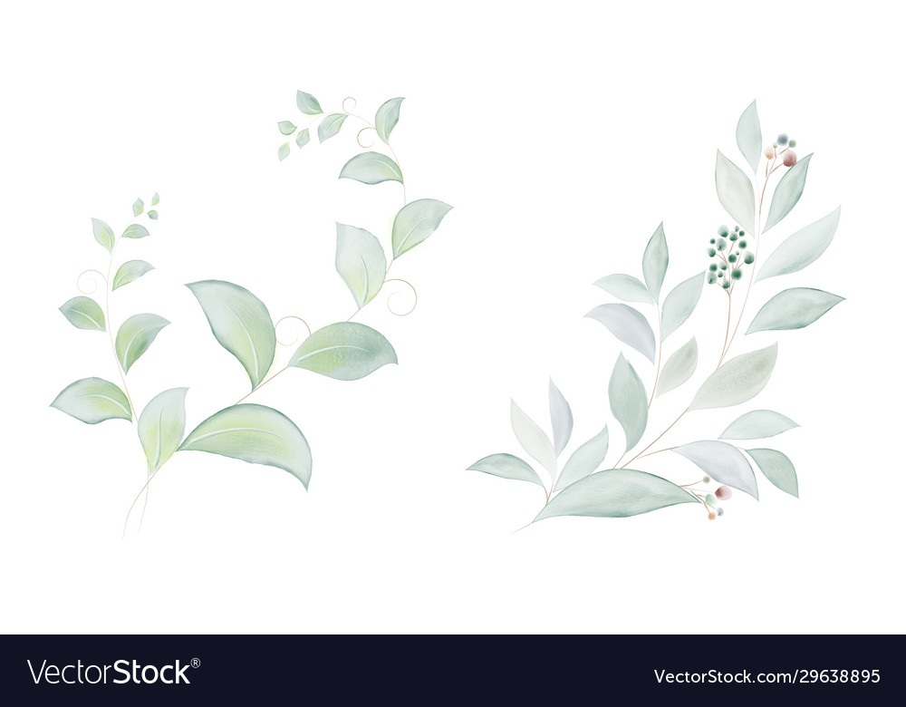 Watercolor set green leaves and branches