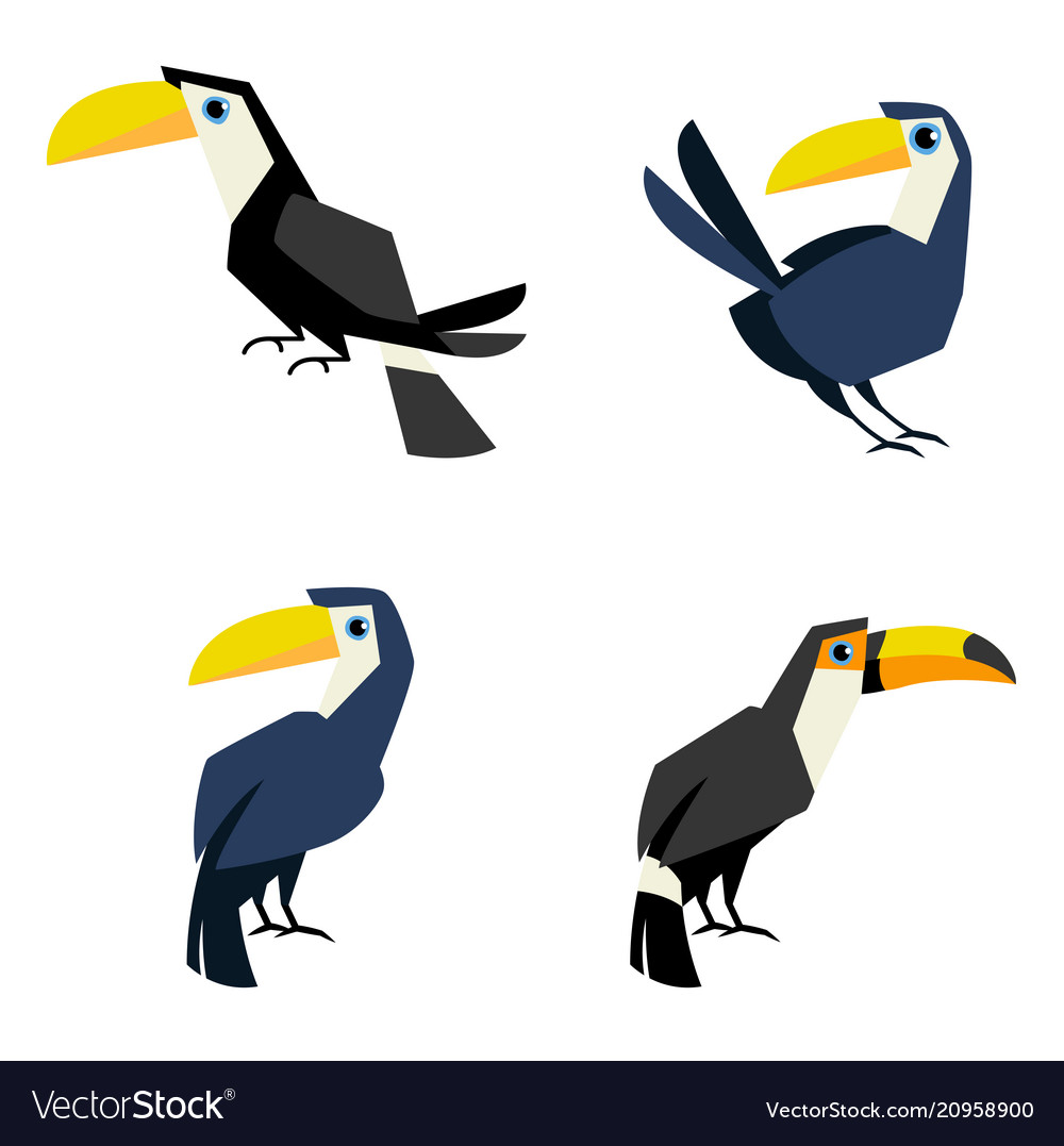 Toucan flat style isolated on white