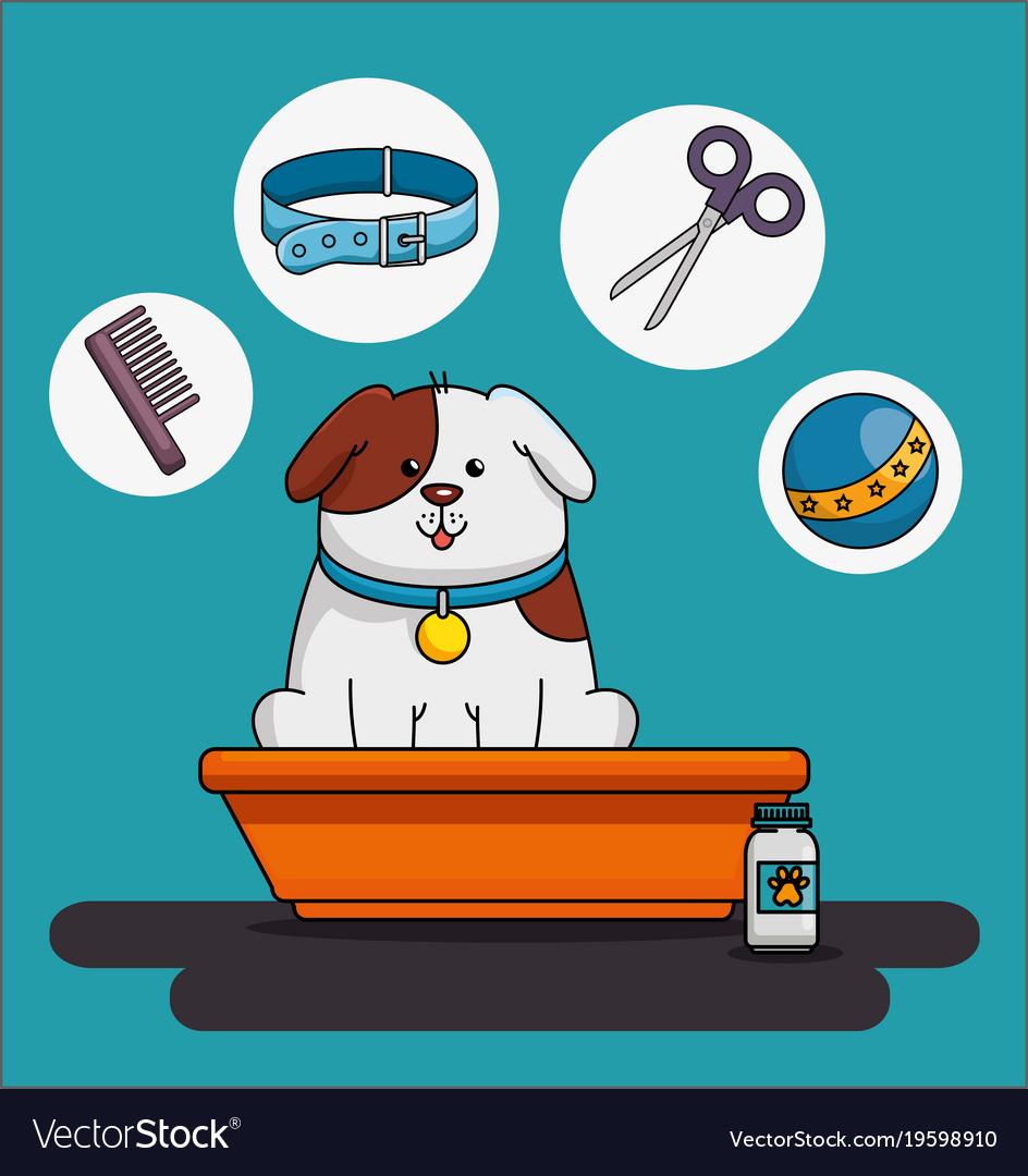 Pet shop set icons
